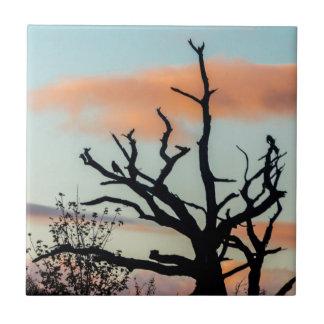 日没のシルエットの木のタイル タイル