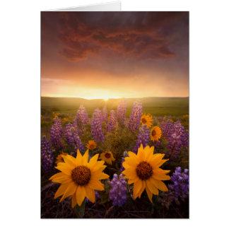 日没のデイジー ノートカード