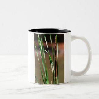 日没のネコヤナギ ツートーンマグカップ