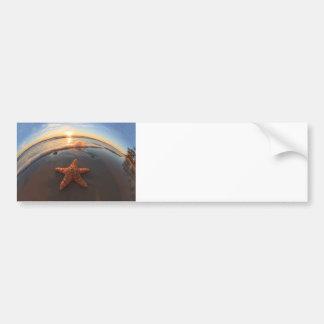 日没のビーチのヒトデ バンパーステッカー