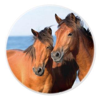 日没のビーチの馬 セラミックノブ