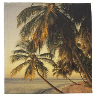 日没のビーチ、トリニダード ナプキンクロス