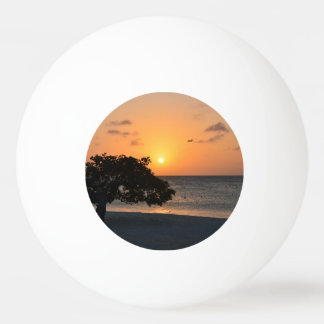 日没のビーチ 卓球ボール