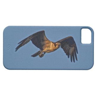 日没のミサゴの魚ワシの飛行 iPhone SE/5/5s ケース