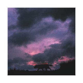 日没のラブラドール犬 キャンバスプリント
