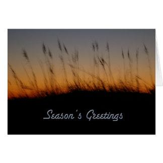 日没の季節の挨拶の海オートムギそして砂丘 カード