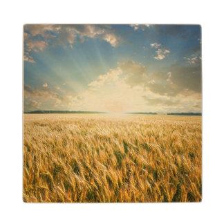 日没の小麦畑 ウッドコースター