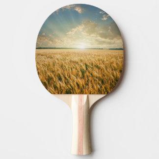 日没の小麦畑 卓球ラケット