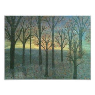 日没の木 フォトプリント