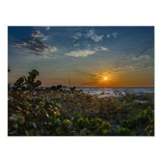 日没の海のブドウ フォトプリント