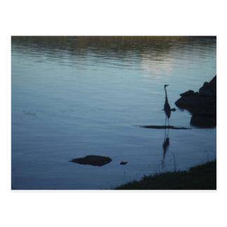 日没の湖のクレーン ポストカード