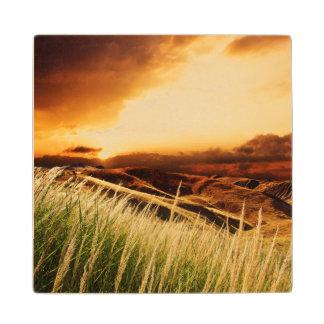 日没の突進の茎 ウッドコースター