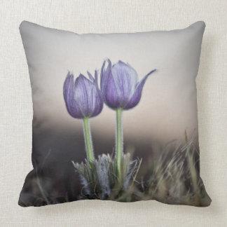 日没の紫色の草原のクロッカス クッション