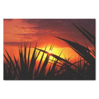 日没の美しい景色葉 薄葉紙