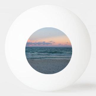 日没の美しい砂のビーチそして海 卓球ボール