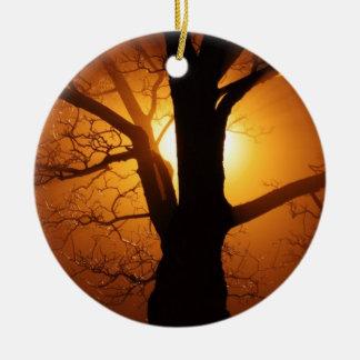 日没の黒い木のシルエットの写真撮影 セラミックオーナメント