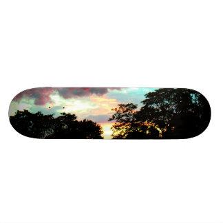 日没 スケートボード