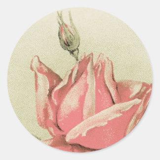 旧式なピンクのバラのステッカー ラウンドシール