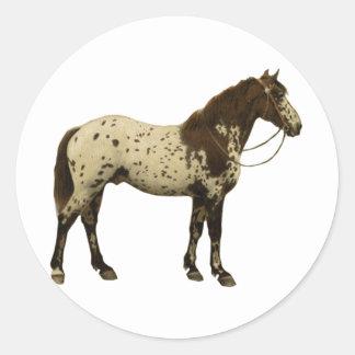 旧式な馬- Appaloosa ラウンドシール