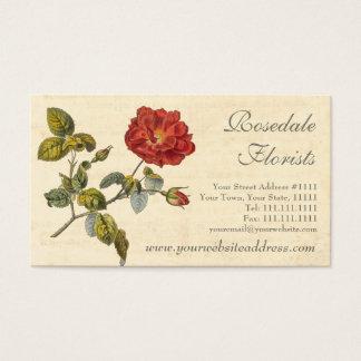 旧式美しく赤いヴィンテージのバラ 名刺