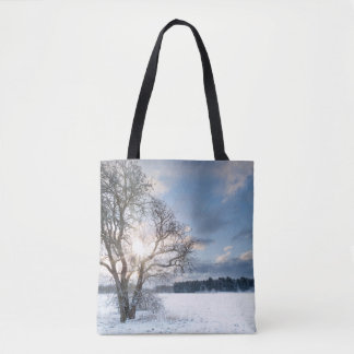 Bare tree in a snow field with early sunrise