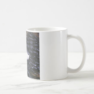 早く流れる川の白鷺 コーヒーマグカップ