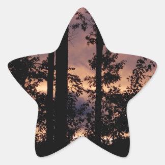 早く- 9月の薄暗がり 星シール