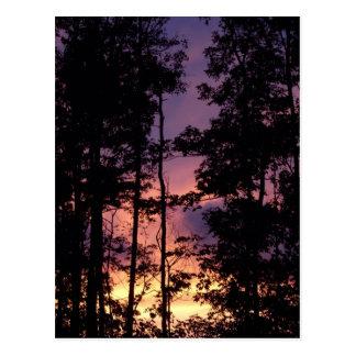 早く- 9月の薄暗がりII ポストカード