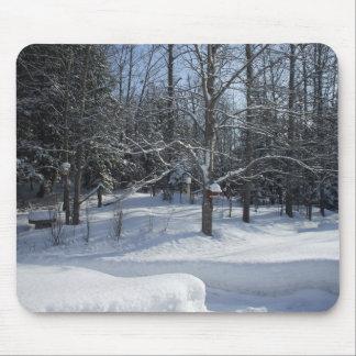 早朝の冬の木 マウスパッド