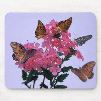 (昆虫)オオカバマダラ、モナークおよびピンクのPenta マウスパッド