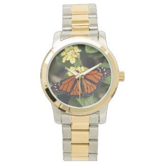 (昆虫)オオカバマダラ、モナークの腕時計 腕時計