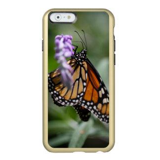 (昆虫)オオカバマダラ、モナークのDanaus Plexippus Incipio Feather Shine iPhone 6ケース