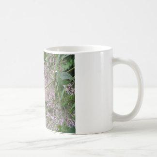 (昆虫)オオカバマダラ、モナークのMilkweed コーヒーマグカップ