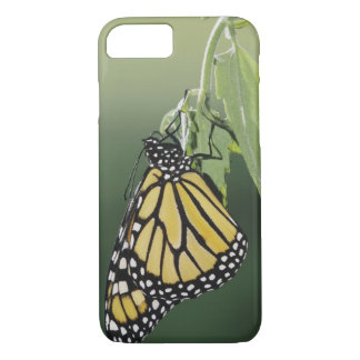 (昆虫)オオカバマダラ、モナーク、Danausのplexippus、大人は最近現れました iPhone 8/7ケース