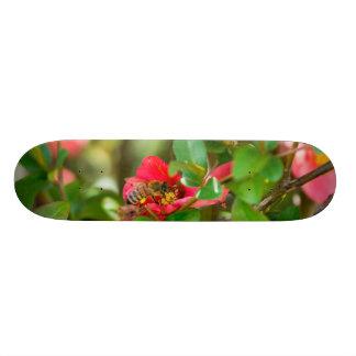 《昆虫》マルハナバチおよびツツジ スケートボード