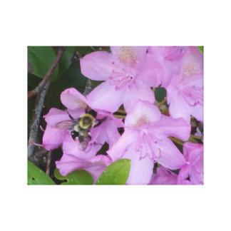 《昆虫》マルハナバチおよびピンクの花 キャンバスプリント