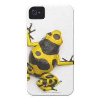《昆虫》マルハナバチの毒投げ矢のカエル Case-Mate iPhone 4 ケース