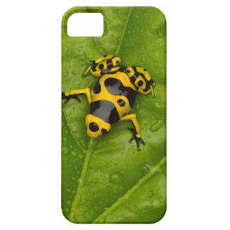 《昆虫》マルハナバチの毒投げ矢のカエル iPhone SE/5/5s ケース