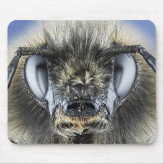 《昆虫》マルハナバチの頭部 マウスパッド