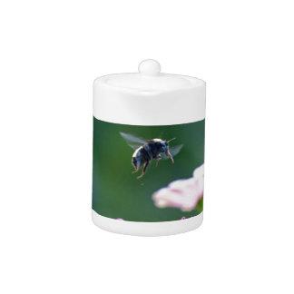 《昆虫》マルハナバチの飛行