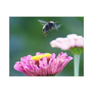 《昆虫》マルハナバチの飛行 キャンバスプリント