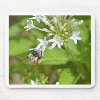 《昆虫》マルハナバチ及び花 マウスパッド