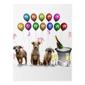 明けましておめでとう2016年を望んでいるかわいい3匹の犬 ポストカード