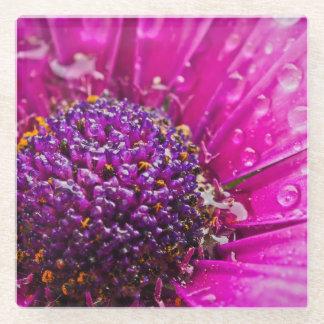 明るいピンクおよび紫色の花 ガラスコースター