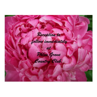 明るいピンクのシャクヤクの結婚披露宴カード ポストカード