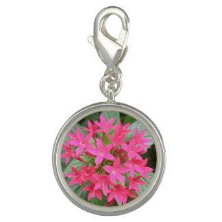 明るいピンクの熱帯花のチャーム チャーム