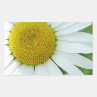 明るい中心の黄色および白いデイジー 長方形シール
