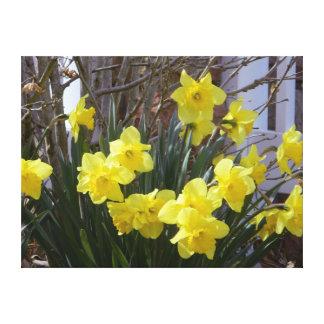明るい春のラッパスイセンのキャンバスプリントのプリント キャンバスプリント