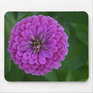 明るい紫色の《植物》百日草の花の花のmousepad マウスパッド