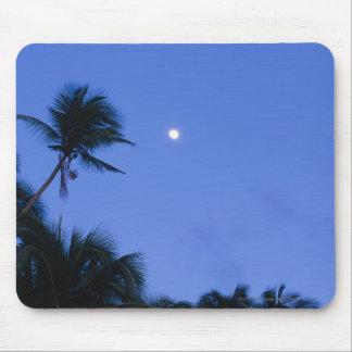明るくつけられた月、ココヤシの木のシルエット マウスパッド